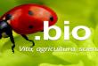 Italia-bio-green