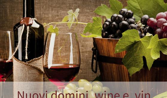 wine e vin